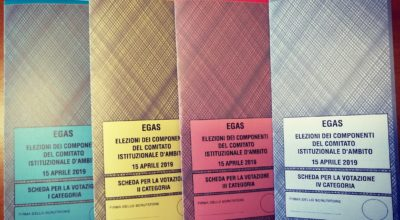 Elezioni dei componenti del Comitato Istituzionale d'Ambito<br> <b>Dichiarazione degli eletti</b>