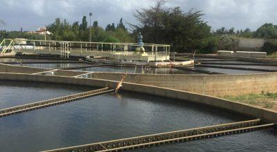 Approvato il progetto esecutivo per il potenziamento dell'impianto di potabilizzazione di Truncu Reale